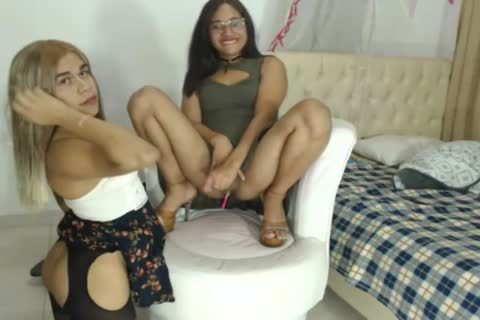 horny trannies Playing On The webcam