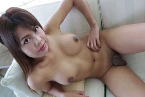 busty Thai Jerks love juice From White Tourists knob