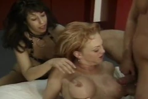breasty ladyboy Hooker Olivia Love With Flamboyant Colour Hair  Sucksmultiple cocks And get ejaculated After lovely butthole  Saturnalia