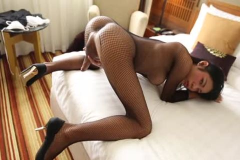 HELLOLADYBOY breasty Fishnet Thai prostitute pounded Hard