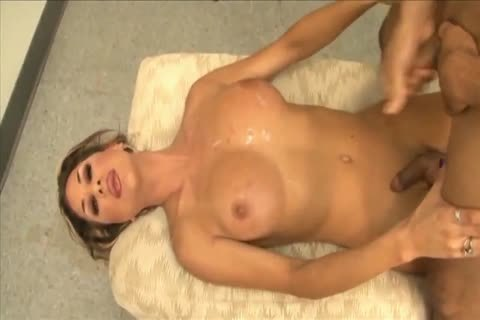 humongous Titty transsexuals 12 - Ariel Everitts