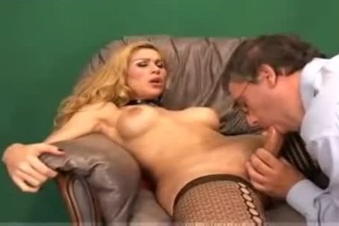 tranny And stud In enchanting Copulation