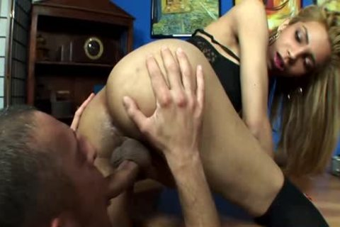 Euro shemale ladyboy acquires Cocksucked By Manica2